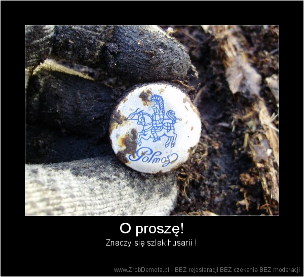 ed5fc9ee5 ZrobDemota.pl - O proszę! Znaczy się szlak husarii !
