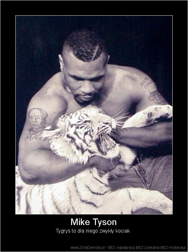 ac2b1fbba88d ZrobDemota.pl - Mike Tyson Tygrys to dla niego zwykły kociak